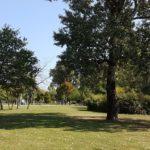 Donaupark - 4