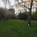 Währinger Park, Wien