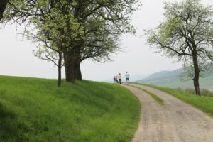 Hiking for children & families in Vienna. Wandern für Kinder & Familien in Wien